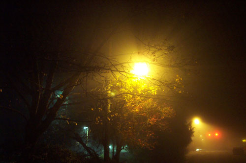 foggy_night_lights.jpg